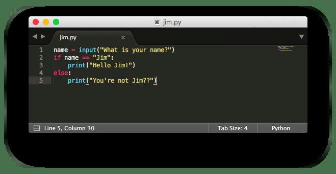python easy programming